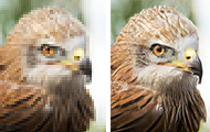 {EnhanceNet}: Single Image Super-Resolution through Automated Texture Synthesis
