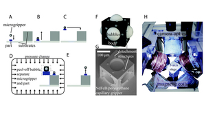 Programmable assembly of heterogeneous microparts by an untethered mobile capillary microgripper