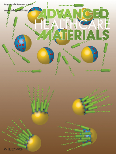 Bacteria-Driven Particles: Patterned and Specific Attachment of Bacteria on Biohybrid Bacteria-Driven Microswimmers (Adv. Healthcare Mater. 18/2016)