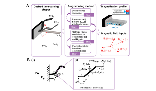 Shape-programmable magnetic soft matter