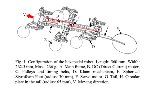 Steering control of a water-running robot using an active tail