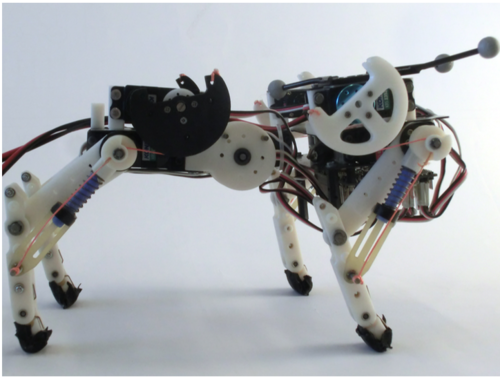 Benefits of an active spine supported bounding locomotion with a small compliant quadruped robot