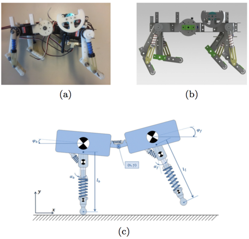 Spinal joint compliance and actuation in a simulated bounding quadruped robot