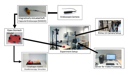 Six Degree-of-Freedom Localization of Endoscopic Capsule Robots using Recurrent Neural Networks embedded into a Convolutional Neural Network