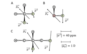A theoretical study of potentially observable chirality-sensitive NMR effects in molecules