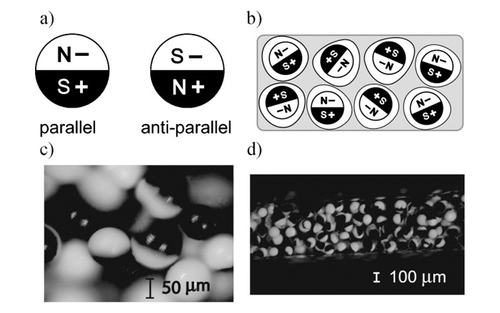 Voltage-Controllable Magnetic Composite Based on Multifunctional Polyethylene Microparticles