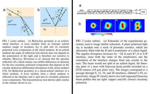 Chiral molecules split light: Reflection and refraction in a chiral liquid