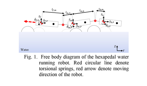 Dynamic analysis on hexapedal water-running robot with compliant joints