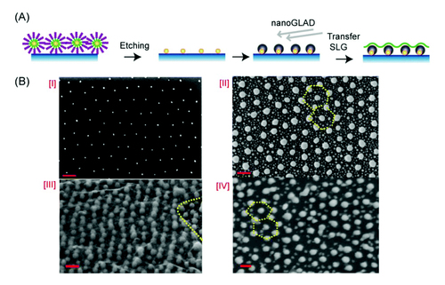Graphene-silver hybrid devices for sensitive photodetection in the ultraviolet