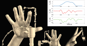 Towards a Statistical Model of Fingertip Contact Deformations from 4{D} Data
