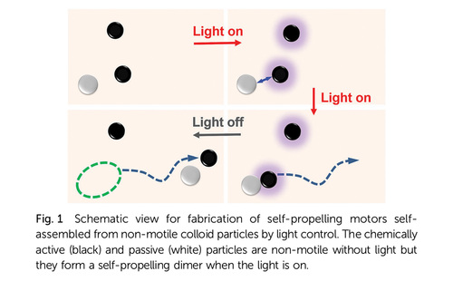 Chemical micromotors self-assemble and self-propel by spontaneous symmetry breaking