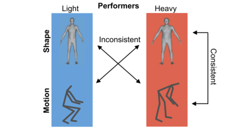 Perceptual Effects of Inconsistency in Human Animations