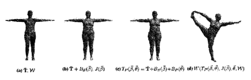 Skinned multi-person linear model