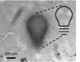 Soft Continuous Surface for Micromanipulation driven by Light-controlled Hydrogels