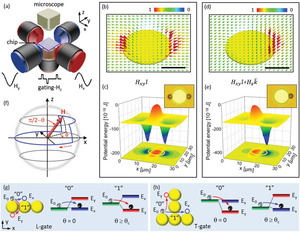 Multifarious Transit Gates for Programmable Delivery of Bio‐functionalized Matters