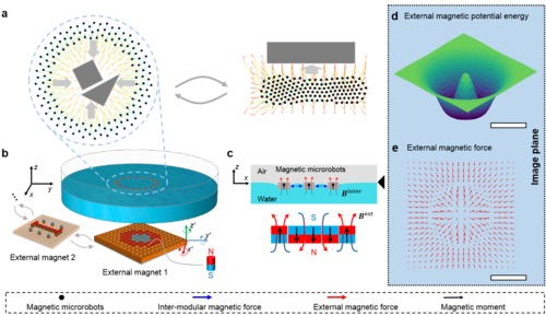 Controlling two-dimensional collective formation and cooperative behavior of magnetic microrobot swarms
