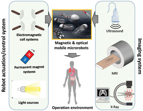 Pros and Cons: Magnetic versus Optical Microrobots