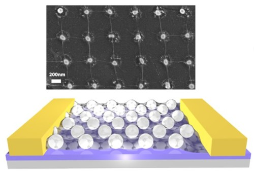 Investigating photoresponsivity of graphene-silver hybrid nanomaterials in the ultraviolet