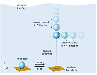 Acoustofluidic Tweezers for the 3D Manipulation of Microparticles