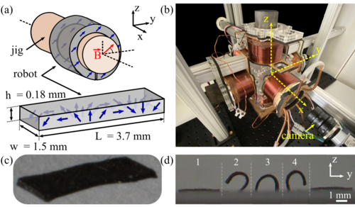 Learning of sub-optimal gait controllers for magnetic walking soft millirobots