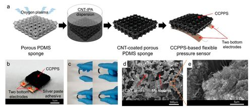 Wearable, ultrawide-range, and bending-insensitive pressure sensor based on carbon nanotube network-coated porous elastomer sponges for human interface and healthcare devices
