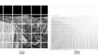 Skin and Bones: Multi-layer, locally affine, optical flow and regularization with transparency