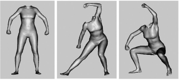 Viewpoint and pose in body-form adaptation