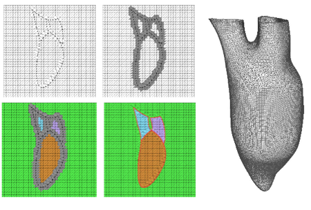 Reconstructing patient-specific cardiac models from contours via Delaunay triangulation and graph-cuts