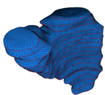 Model Reconstruction of Patient-Specific Cardiac Mesh from Segmented Contour Lines